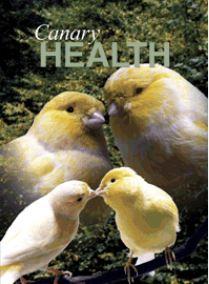 canary health